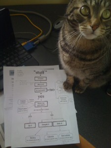 My Cat and Getting Thing Done Flowchart